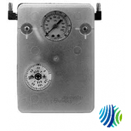 T-8020-5 Series T-8020 Immersion Controller, Two-Position