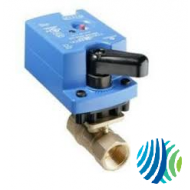 VG1241AD+923BGA Model VG1241AD Two-Way Plated Brass Trim NPT End Connections Ball Valve with Model VA9203-BGA-2 Spring-Return Open without Switche Electric Actuator